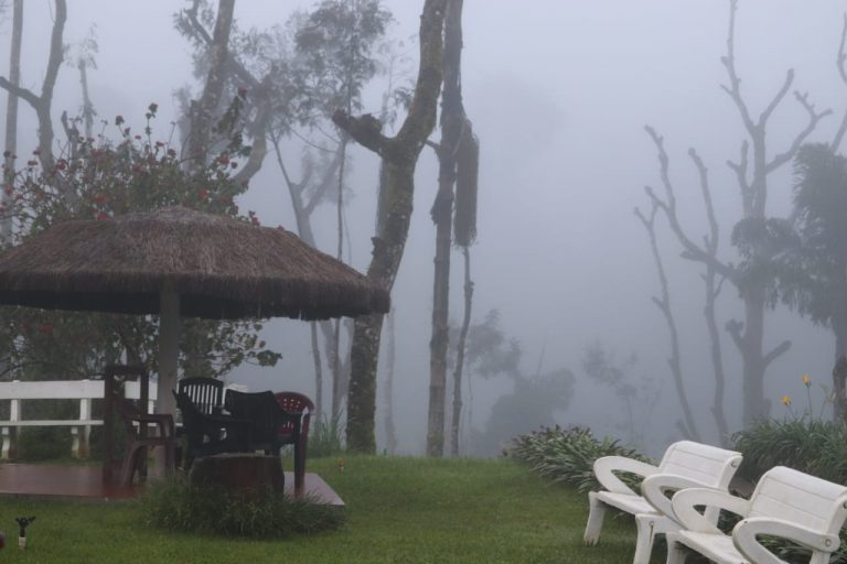 Chilling Weather in Chikmagalur Homestay - Beanzone Homestay